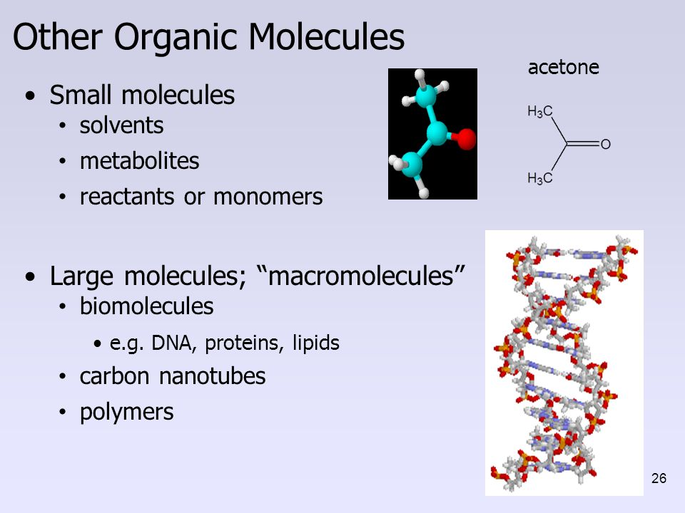 biological macromolecules post lab Macromolecules materials item per bench per class knowledge of the basic structure of each macromolecule to perform tests in the lab that detect the.
