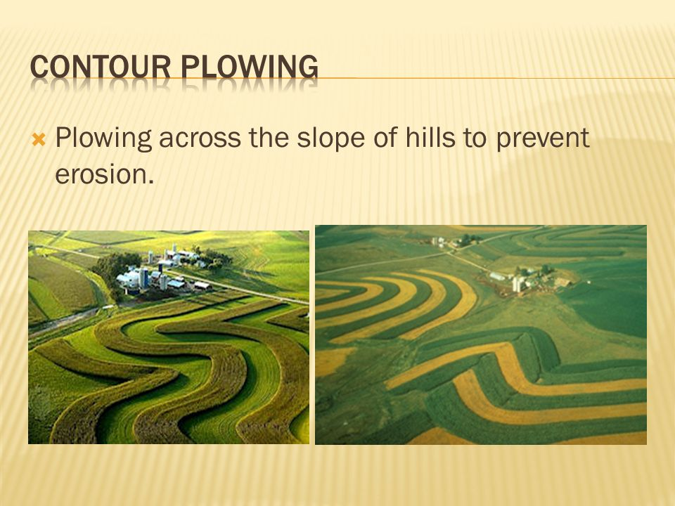 From Bedrock to Soil. - ppt download