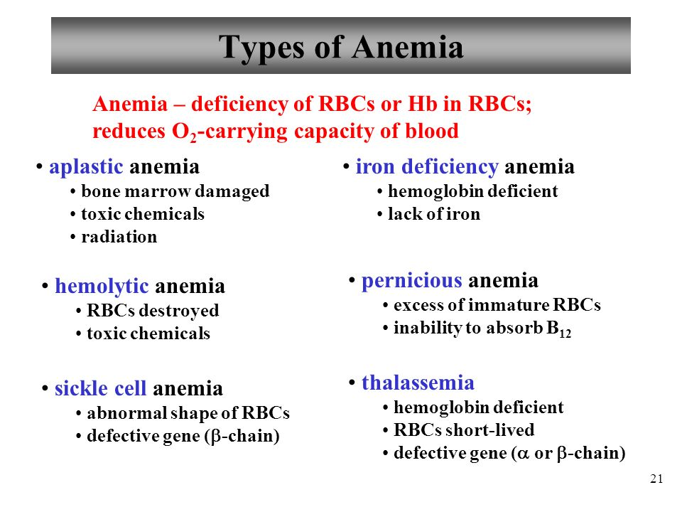 an introduction to the disease pernicious anemia Learn about pernicious anemia from patients' first hand experiences and i had pernicious anemia, and auto-immune disease that attacks the stomach's ability to the reason being that my gp (& most it would seem) do not understand pernicious anaemia, very little research (if any) is.