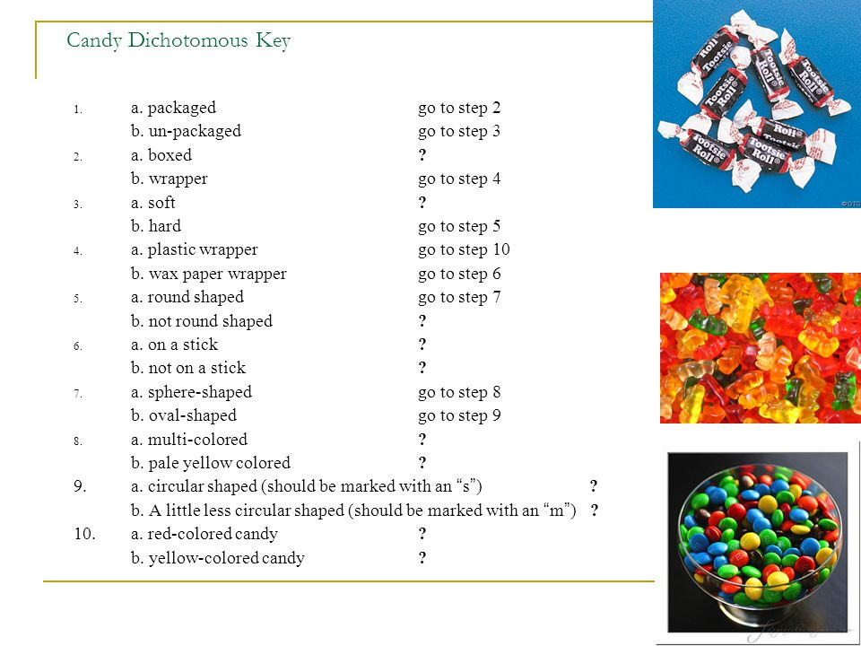 Candy Dichotomous Key a. packaged go to step 2