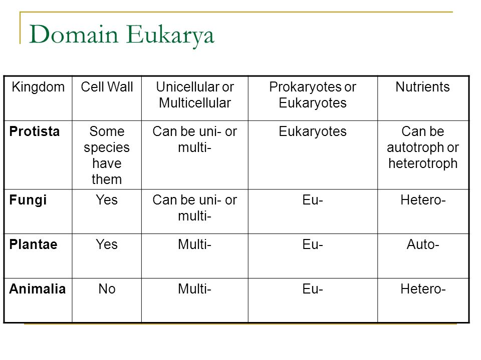 Domain Eukarya Kingdom Cell Wall Unicellular or Multicellular