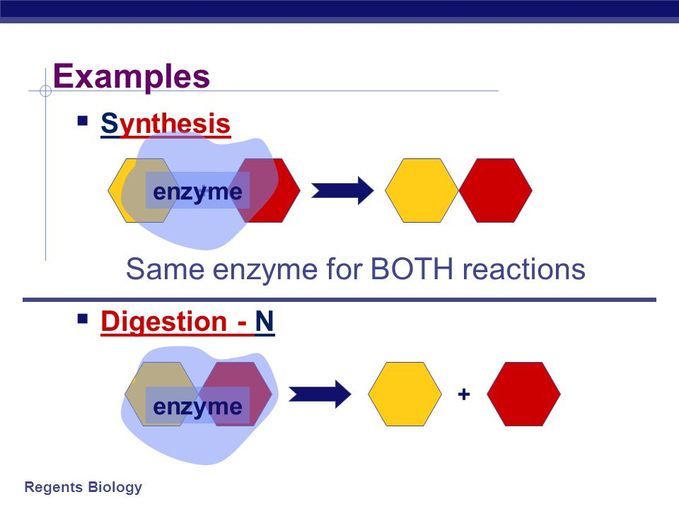 Same enzyme for BOTH reactions