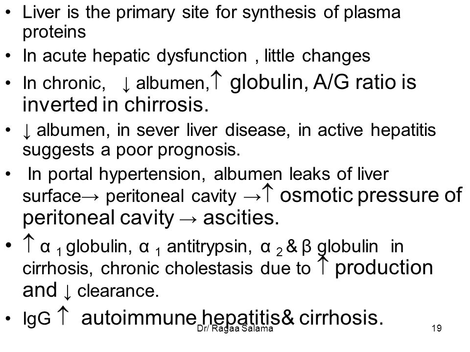 Liver is the primary site for synthesis of plasma proteins