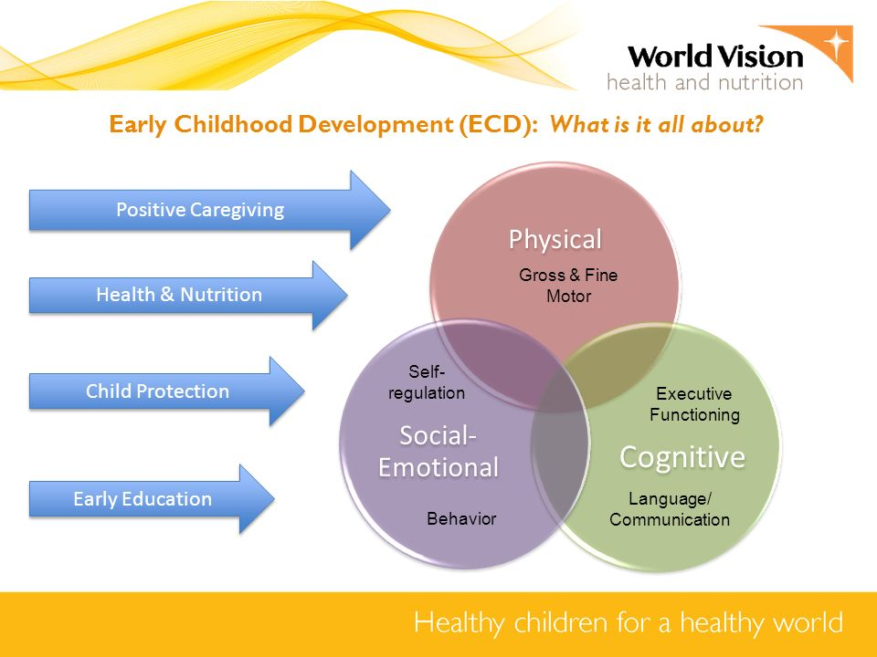 Early child development ecd ppt video online download for Physical and motor development in early childhood