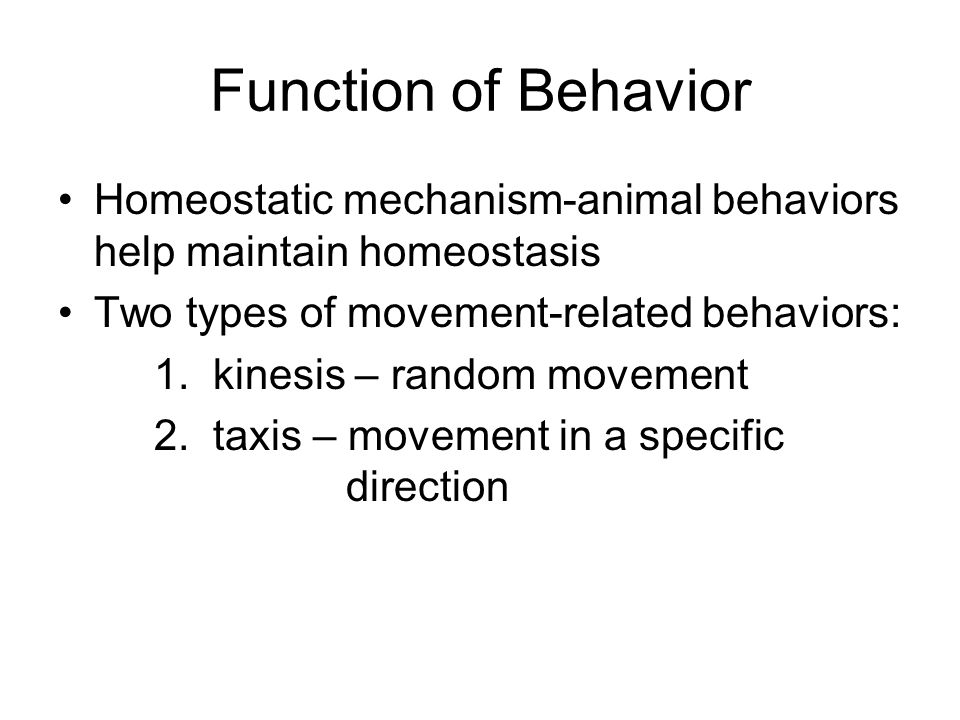 the win relationship of animal behavior is