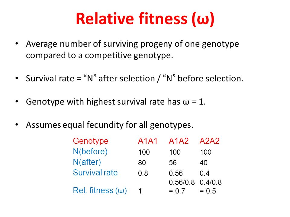 the effects of relative fitness of Ie, the relative fitness of genotypes can be assigned numerical values the consequences of natural selection depend on the dominance of fitness: eg, whether the fit phenotype is due to a dominant or recessive allele then, allele frequency change is predicted by the general selection equation: q = [pq] [(q)(w 2 - w1) +.