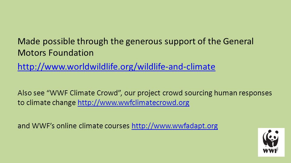 Wildlife And Climate Change Ppt Video Online Download