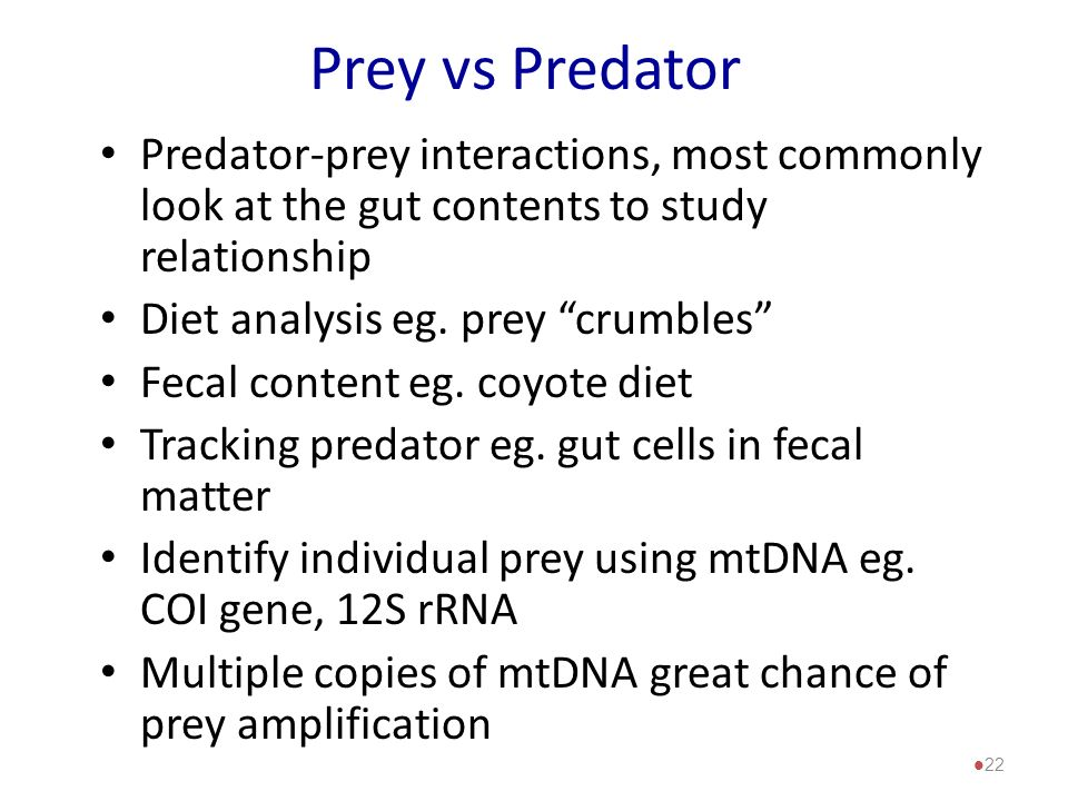 Prey vs Predator Predator-prey interactions, most commonly look at the gut contents to study relationship.