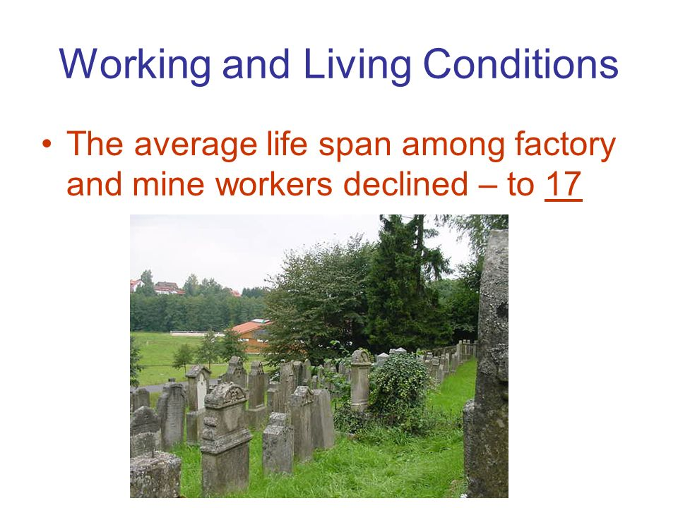 living and working conditions at the Working conditions in earning low and unstable incomes and often have to combine more than one activity to make a living decent rural employment and social.