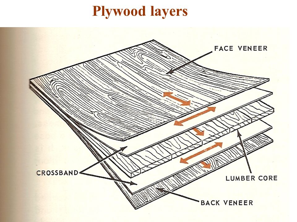 Selecting And Roughing Out Lumber Ppt Video Online Download