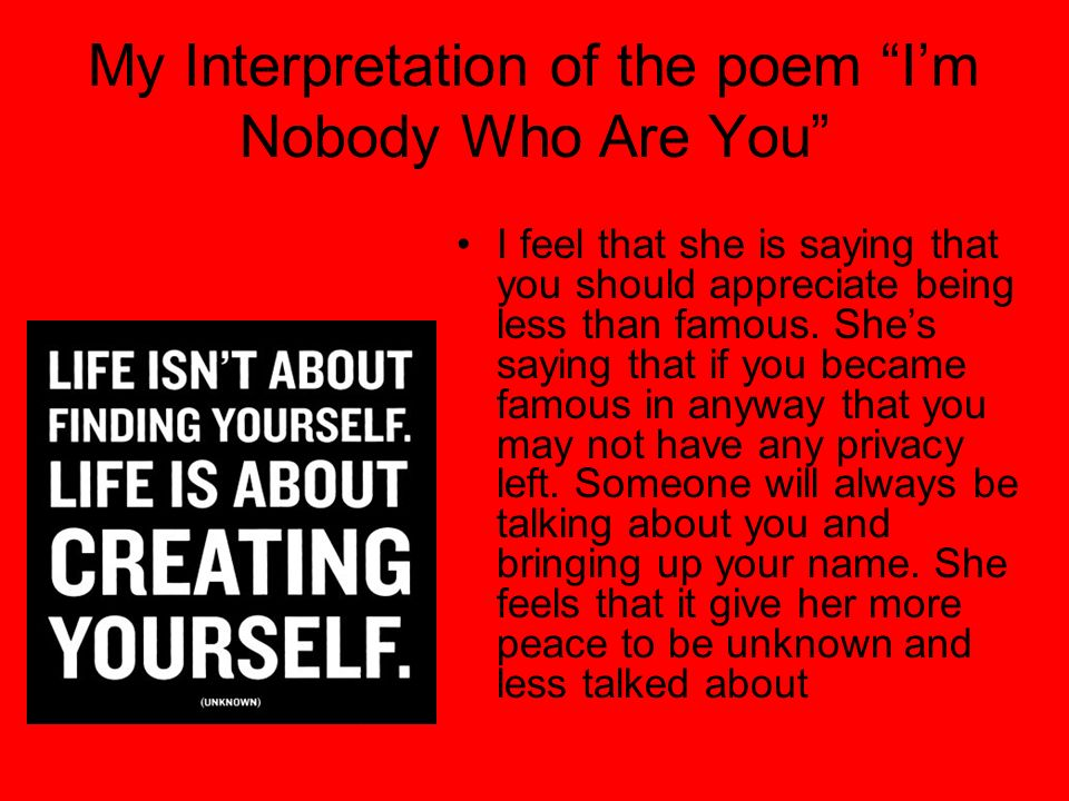 My Interpretation of the poem I'm Nobody Who Are You