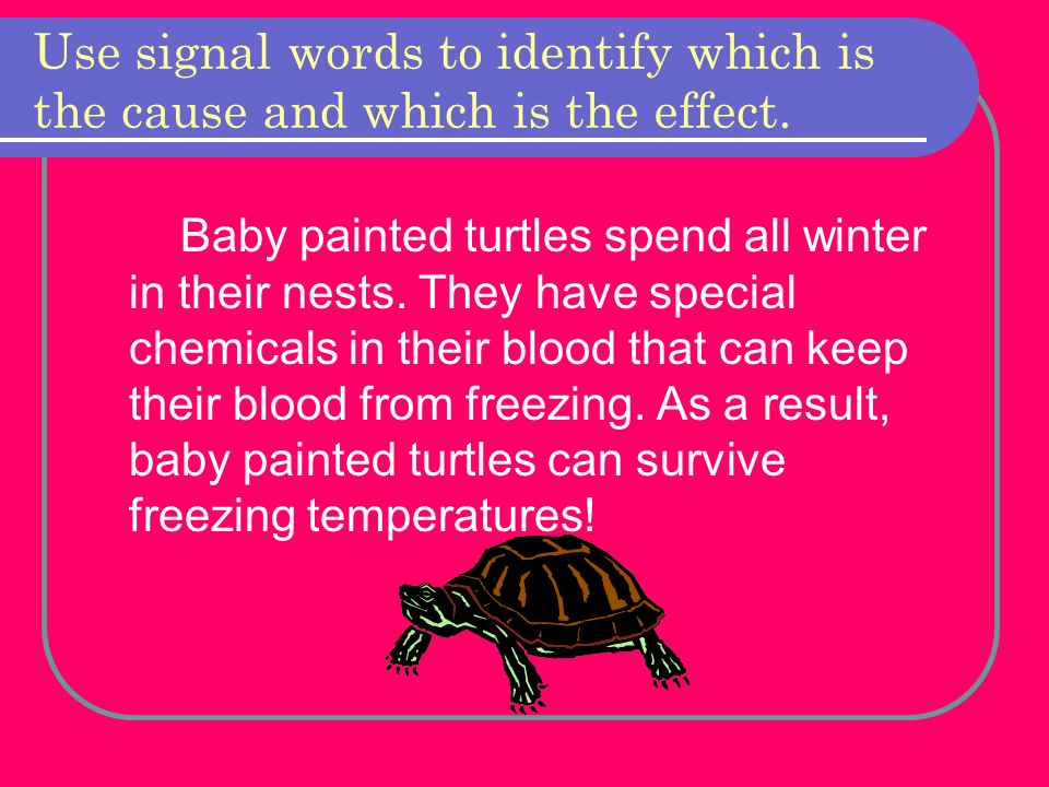 Use signal words to identify which is the cause and which is the effect.
