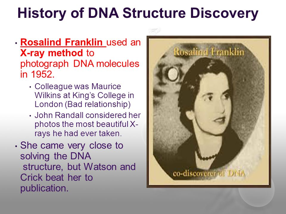 History of DNA Structure Discovery