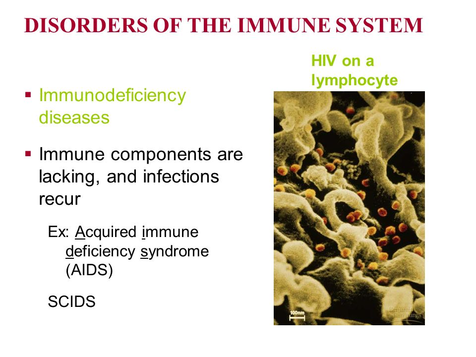 an argument against the acquired immune deficiency syndrome The fact that his argument was largely  that the hiv-aids debate is over,  cell leukemia virus in acquired immune deficiency syndrome (aids.