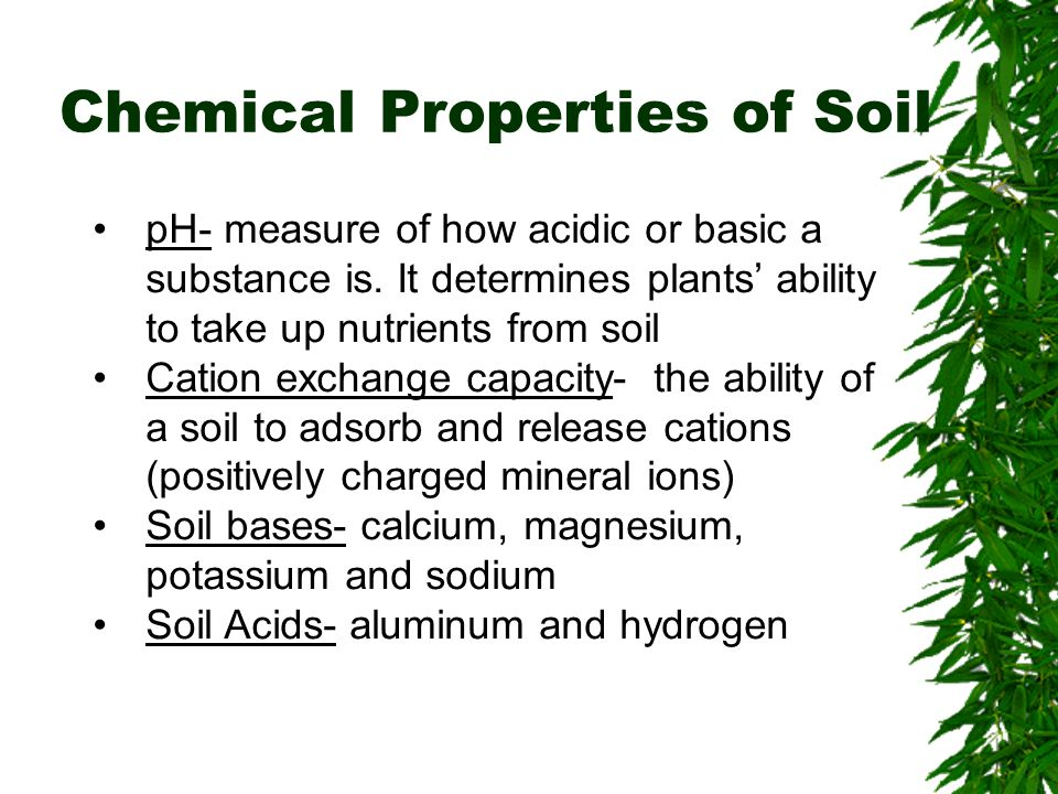 Soils chapter 10 brooks cole publishing company itp for What substances are in soil