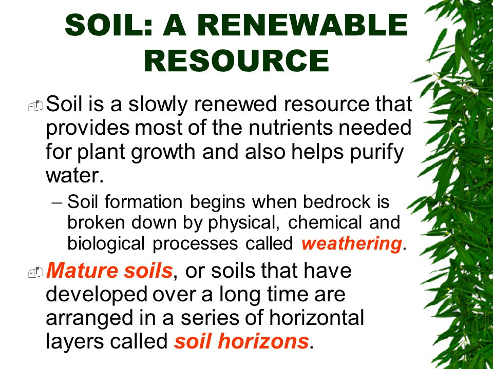 Soils chapter 10 brooks cole publishing company itp for What is soil resources