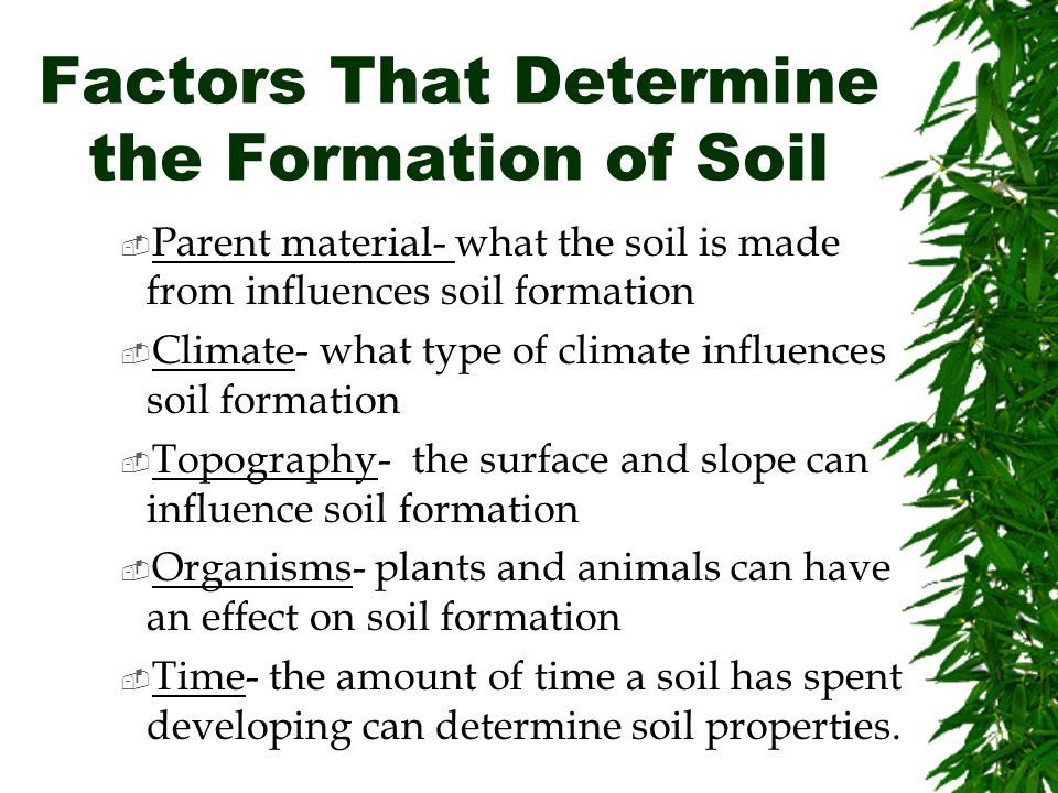 Download issues in italian syntax for Soil forming factors