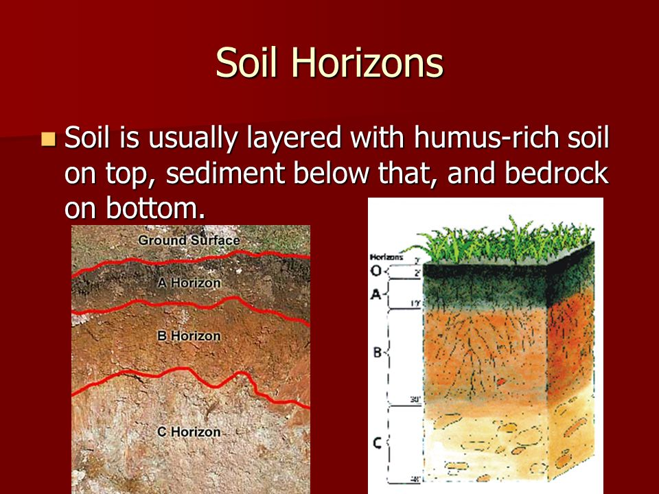Weathering and soil formation ppt download for What is rich soil called