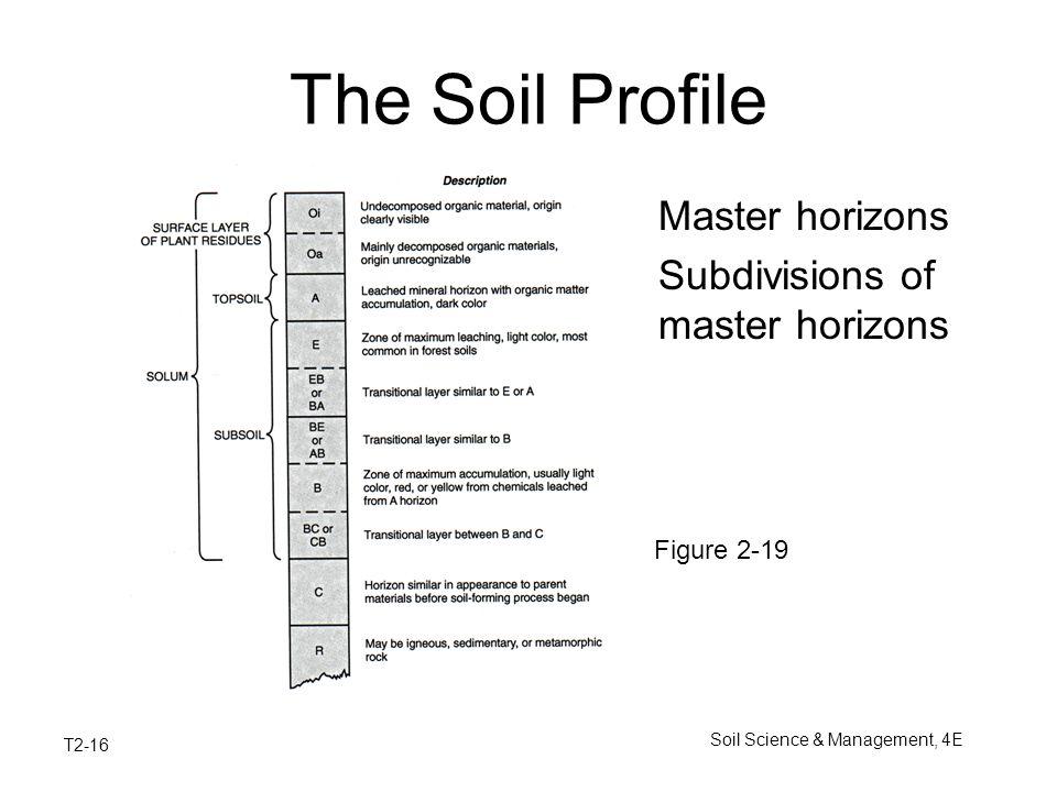 Soil origin and development ppt video online download for Soil 7th grade