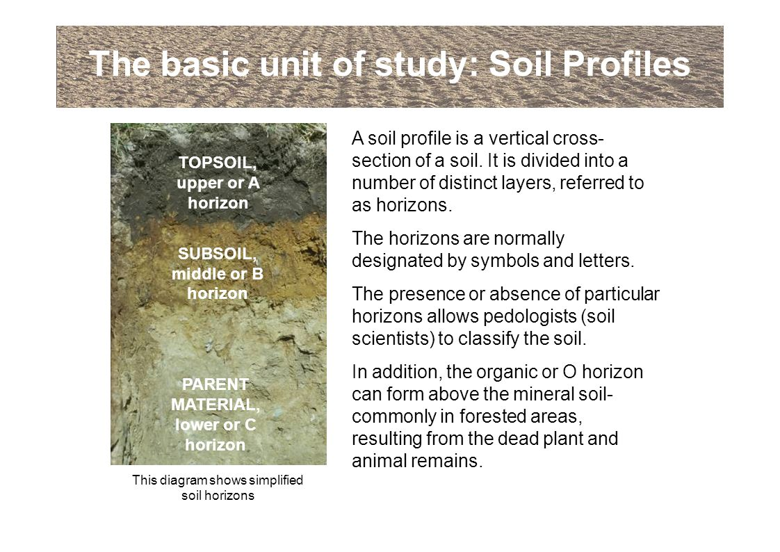 An introduction to soils and soil terminology ppt download for Soil 5 letters