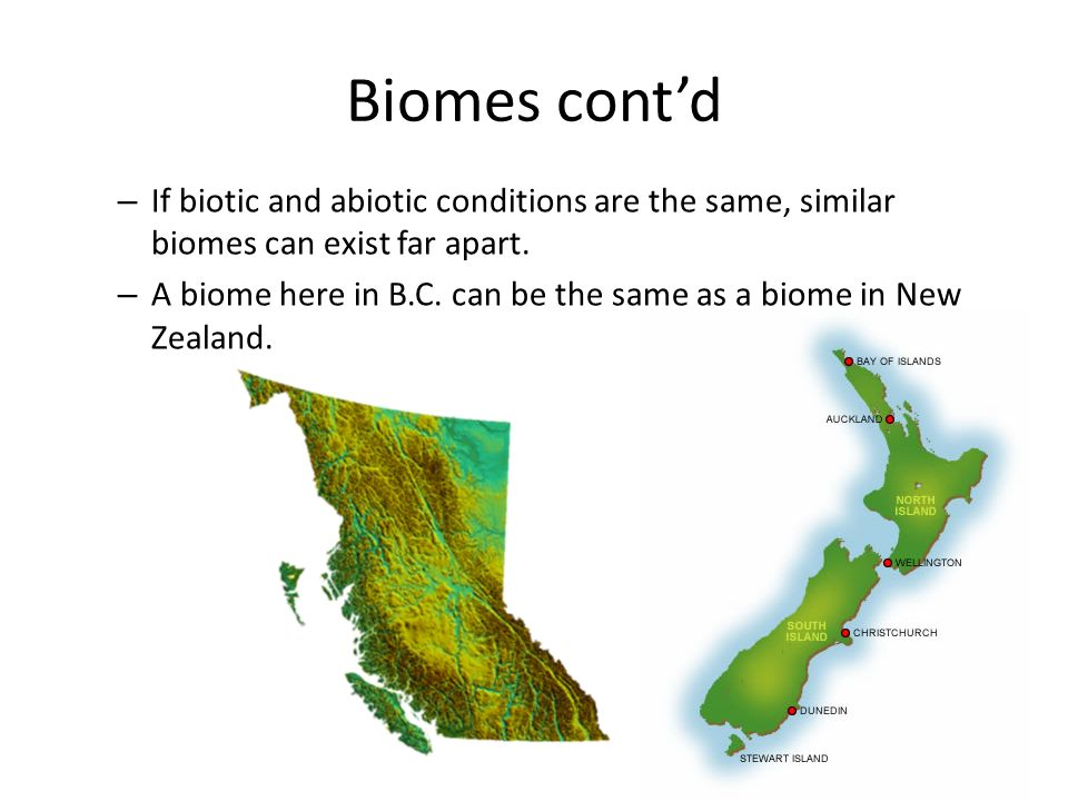 Biomes cont'd If biotic and abiotic conditions are the same, similar biomes can exist far apart.
