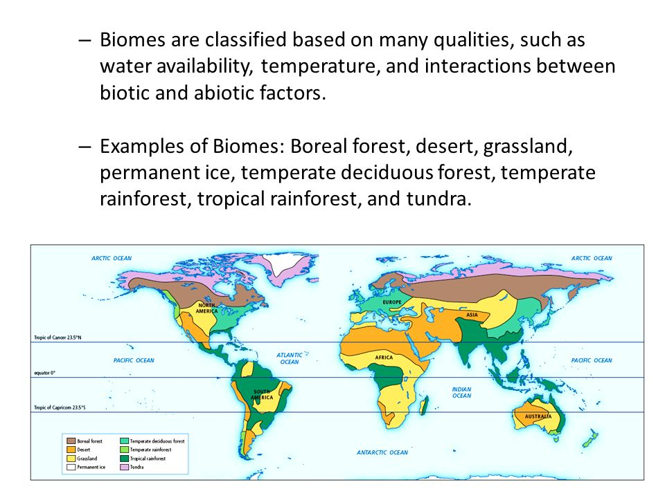 Biomes are classified based on many qualities, such as water availability, temperature, and interactions between biotic and abiotic factors.