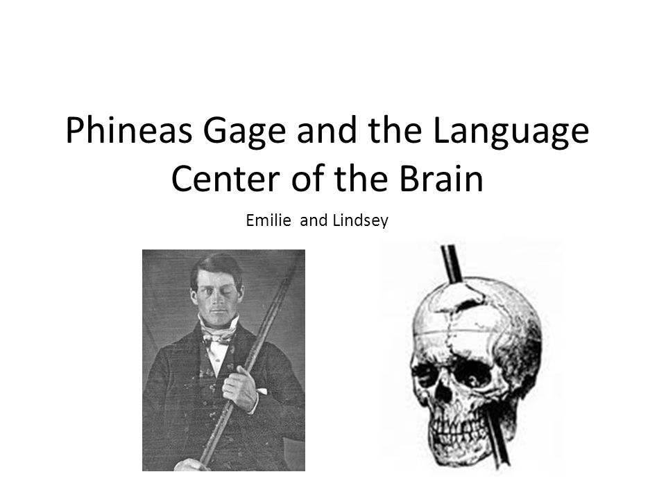 phineas gage and emotional intelligence 1 Start studying emotional intelligence, emotional intelligence learn vocabulary, terms  wrote about phineas gage who had his skill pierced by a rod.