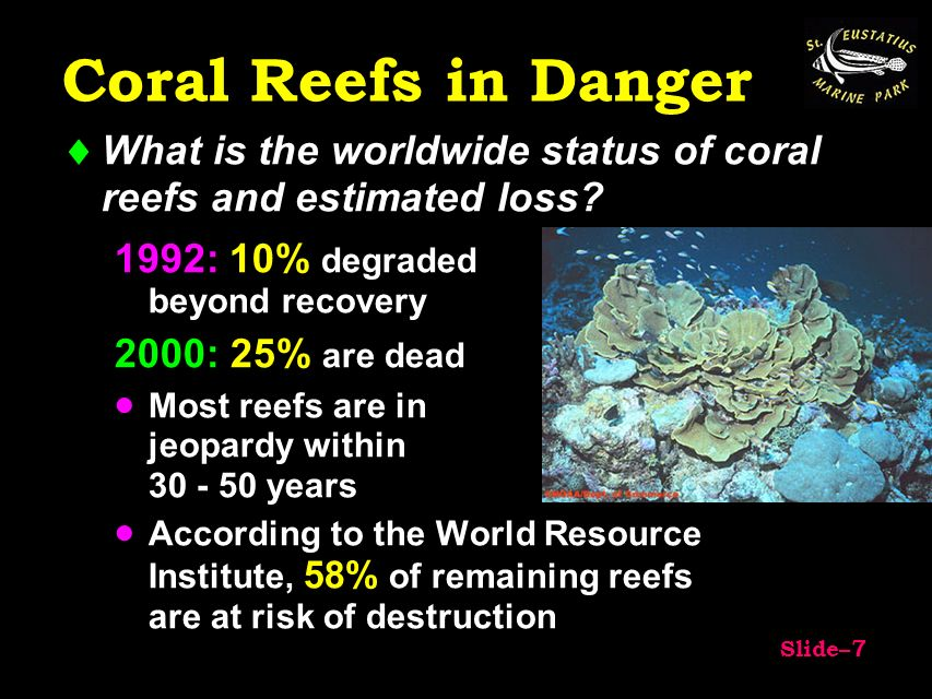 are coral reefs in danger essay Extinction risks for coral reefs essay example 1249 words 5 pages coral reef ecosystems around the globe are threatened by human interferences and climate change.