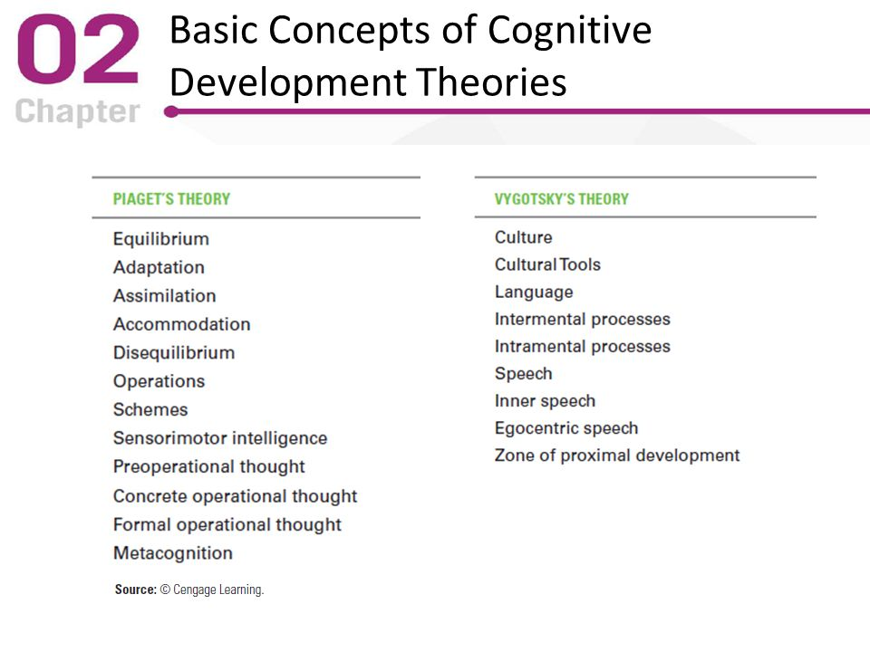 theories of cognitive development pdf