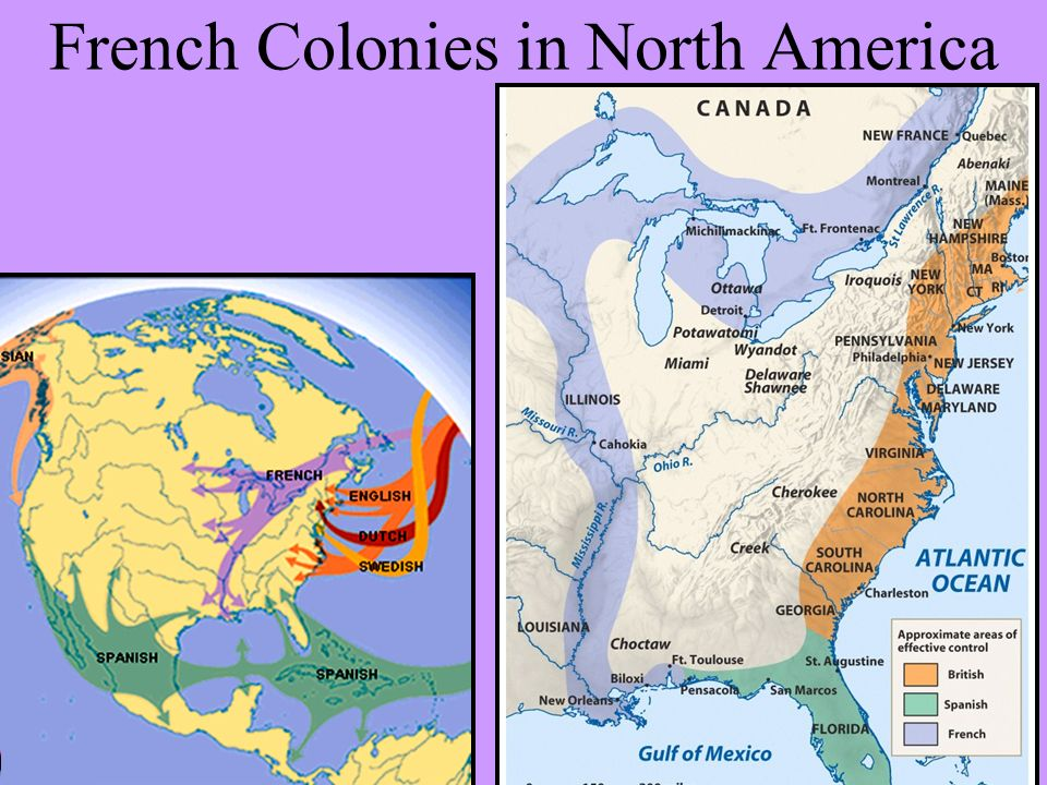 french settlement spanish girl personals French colonial art sources source for information on french colonial art:  marked the short-lived french settlement  one year after it was built, the spanish.