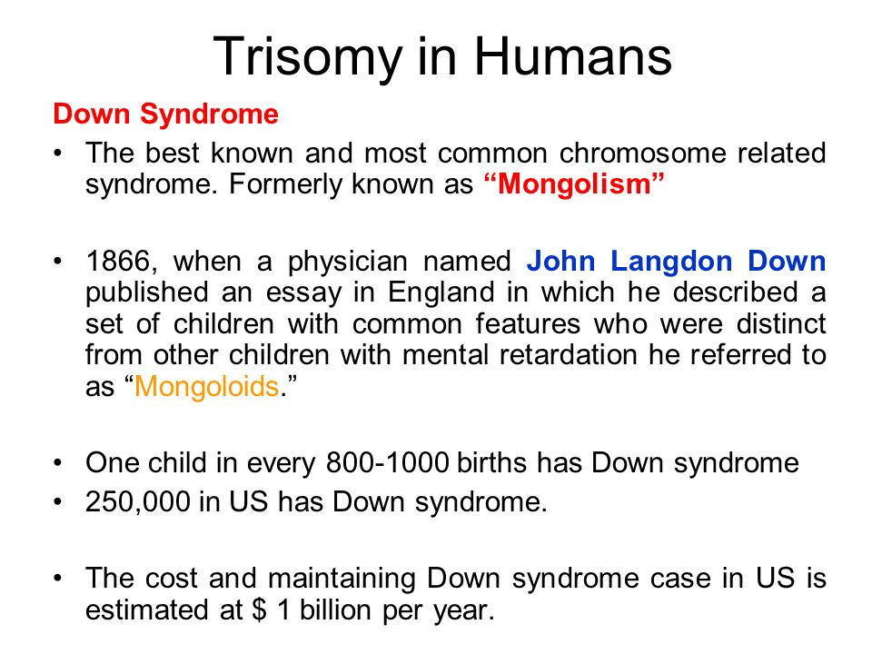 the genetic information is found on our chromosomes ppt  trisomy in humans down syndrome
