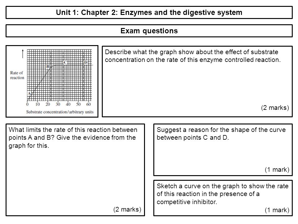 an examination of enzymes Free enzyme papers, essays, and research papers these results are sorted by most relevant first (ranked search) you may also sort these by color rating or essay length.