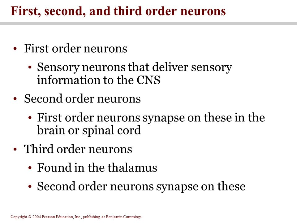 second order information Called second- order relational information, becomes more important with   information in producing the fie and whether second- or first- order relational.
