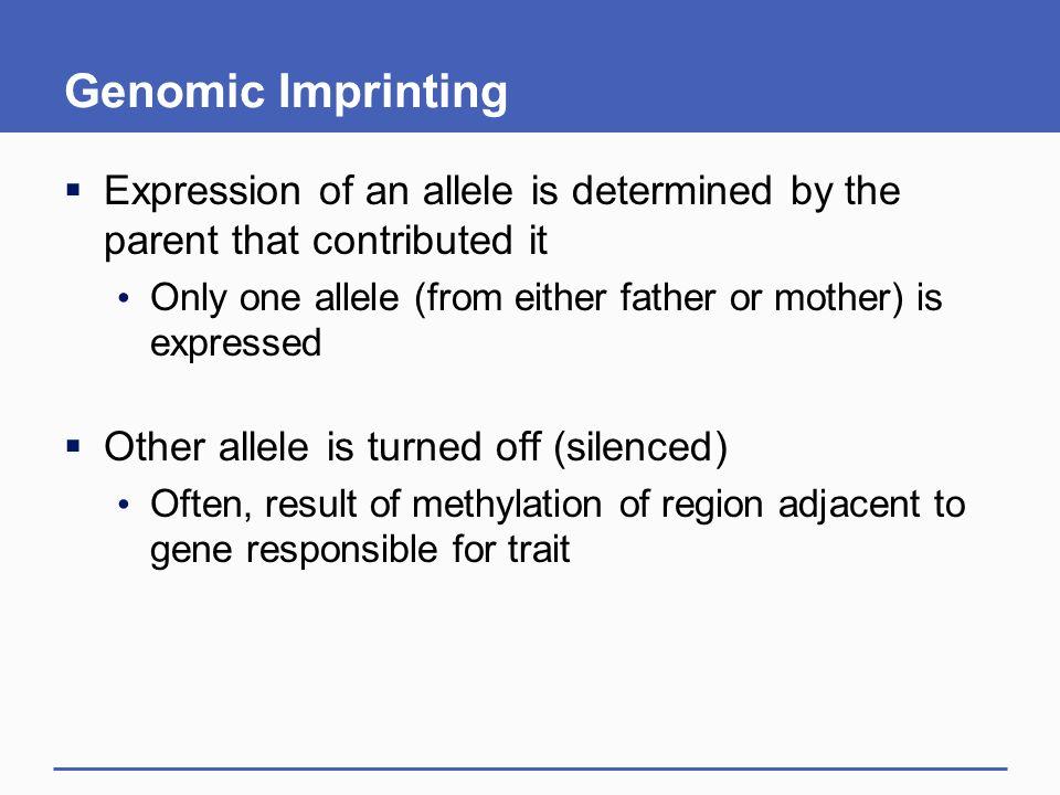 genomic imprinting animation - photo #17