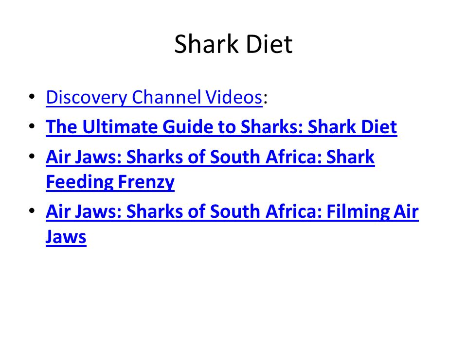 Shark Diet Discovery Channel Videos: