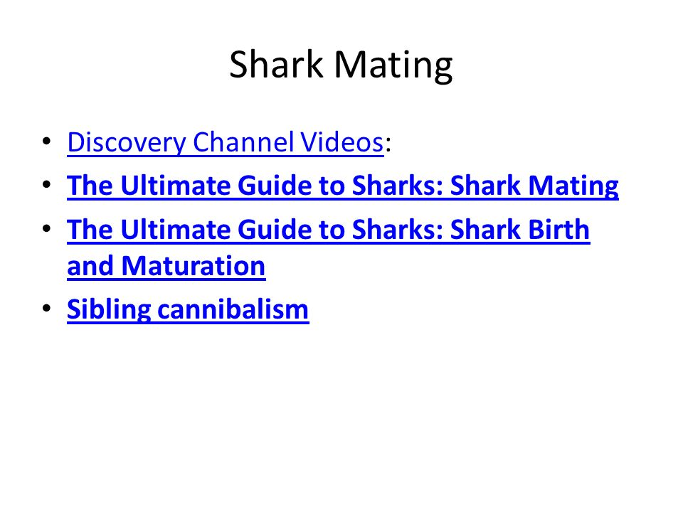 Shark Mating Discovery Channel Videos:
