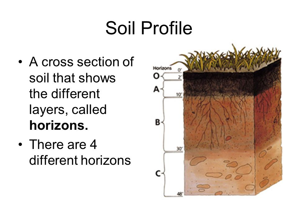 Weathering erosion and deposition ppt video online download for What are the different layers of soil