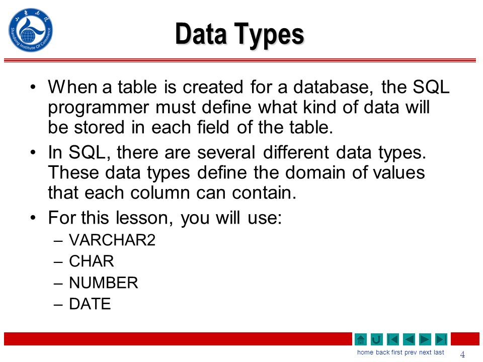 data types when a table is created for a database the sql programmer must define - Sql Programmer