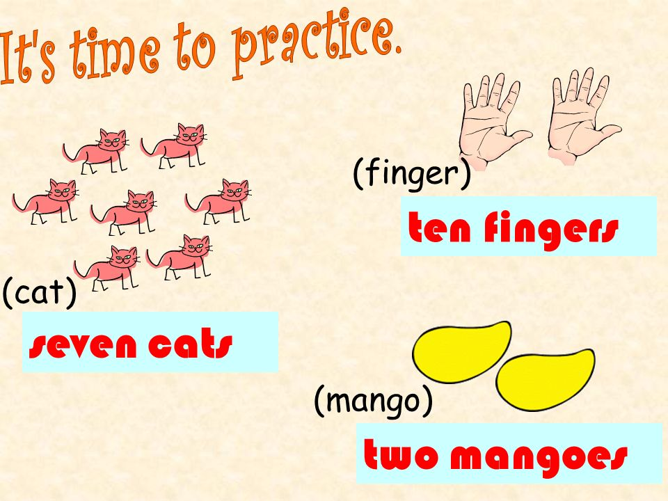ten fingers seven cats two mangoes It s time to practice. (finger)