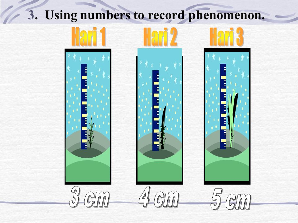 3. Using numbers to record phenomenon.
