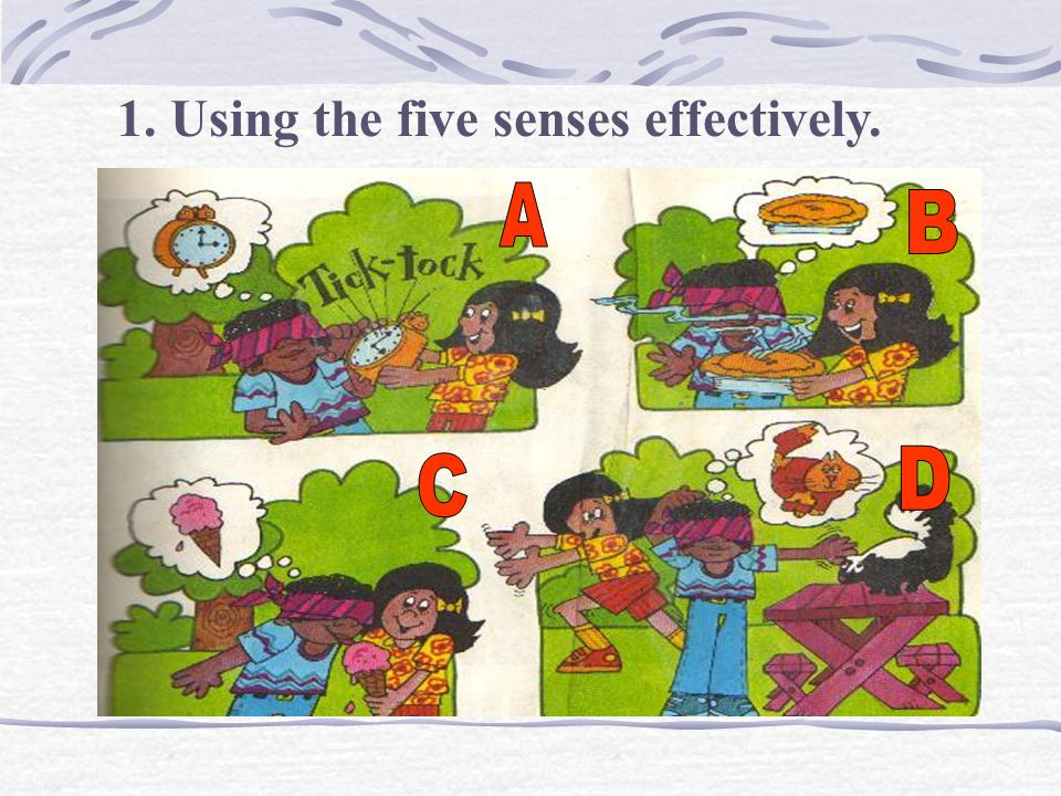 Using the five senses effectively.