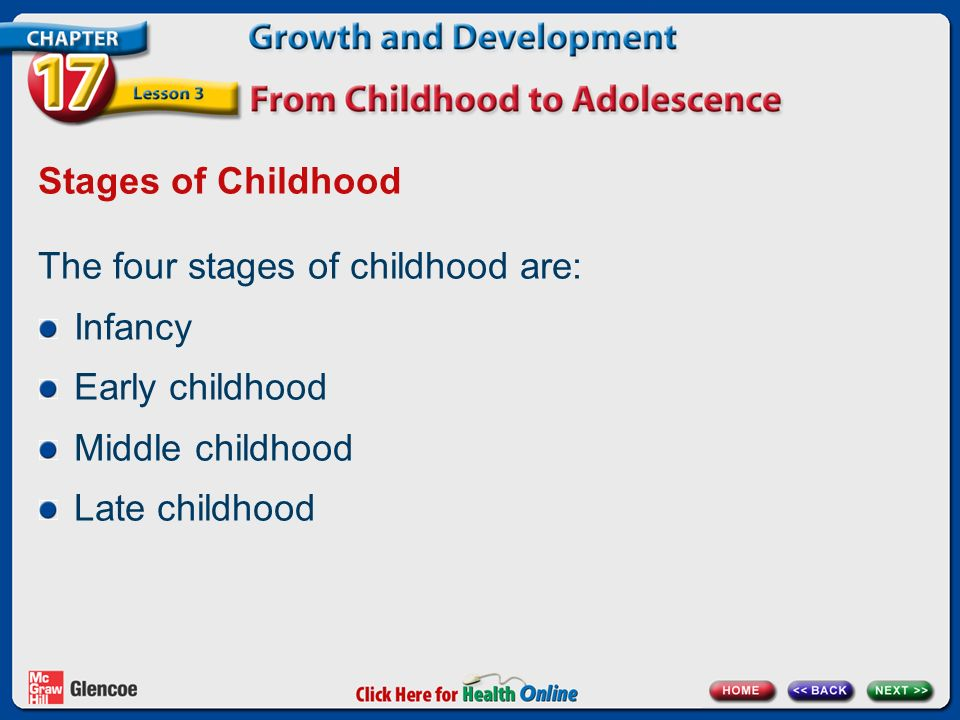 stages of childhood The human life cycle may be divided into varying amounts of stages the five main stages of the life cycle are birth, infancy, childhood, adolescence and adulthood birth begins with fertilization and usually ends after approximately 40 weeks of pregnancy this is considered the stage of potential.