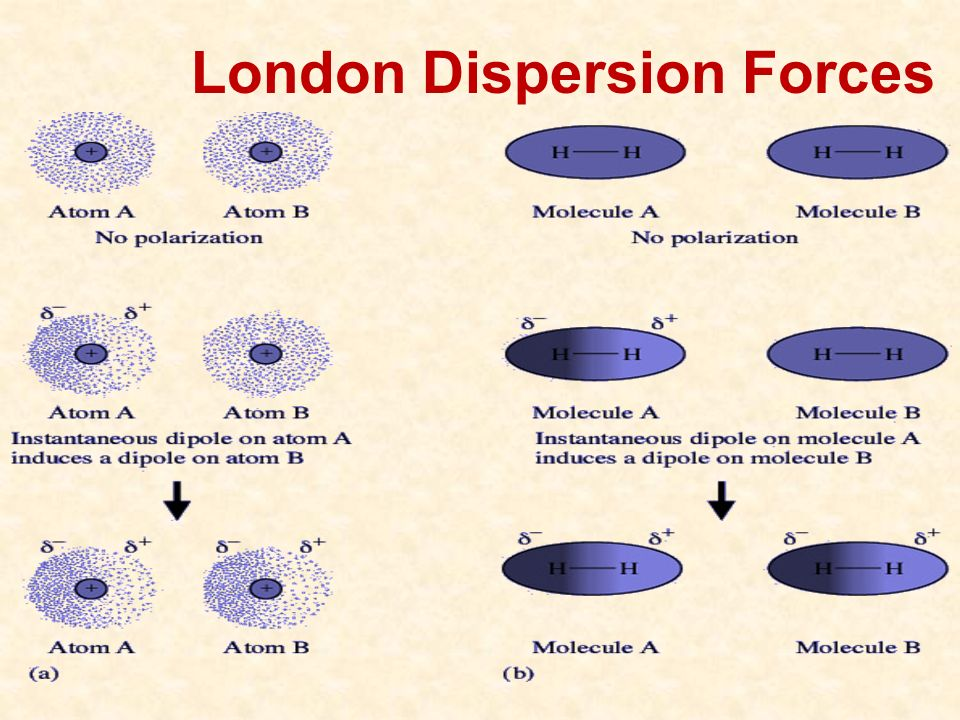 download Membrane Bioreactors