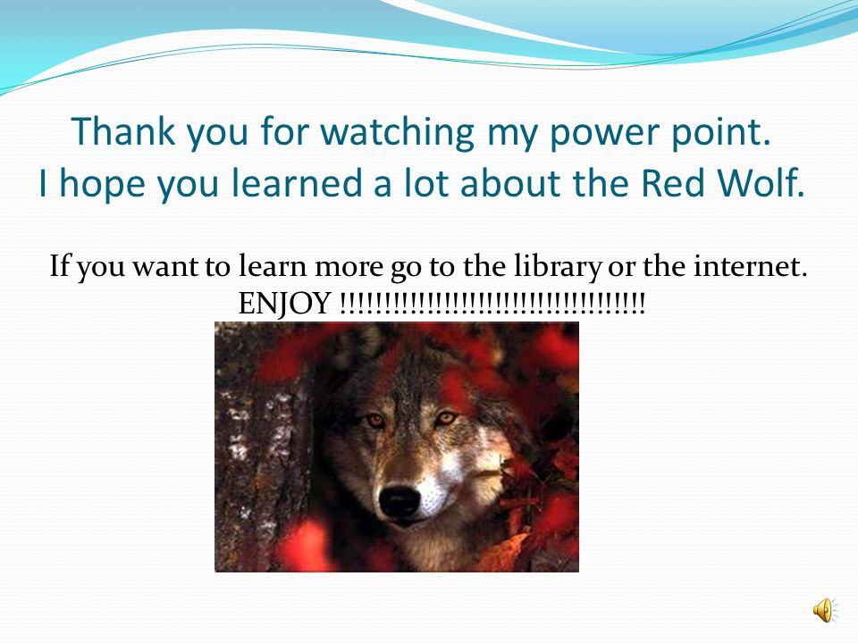 Thank you for watching my power point