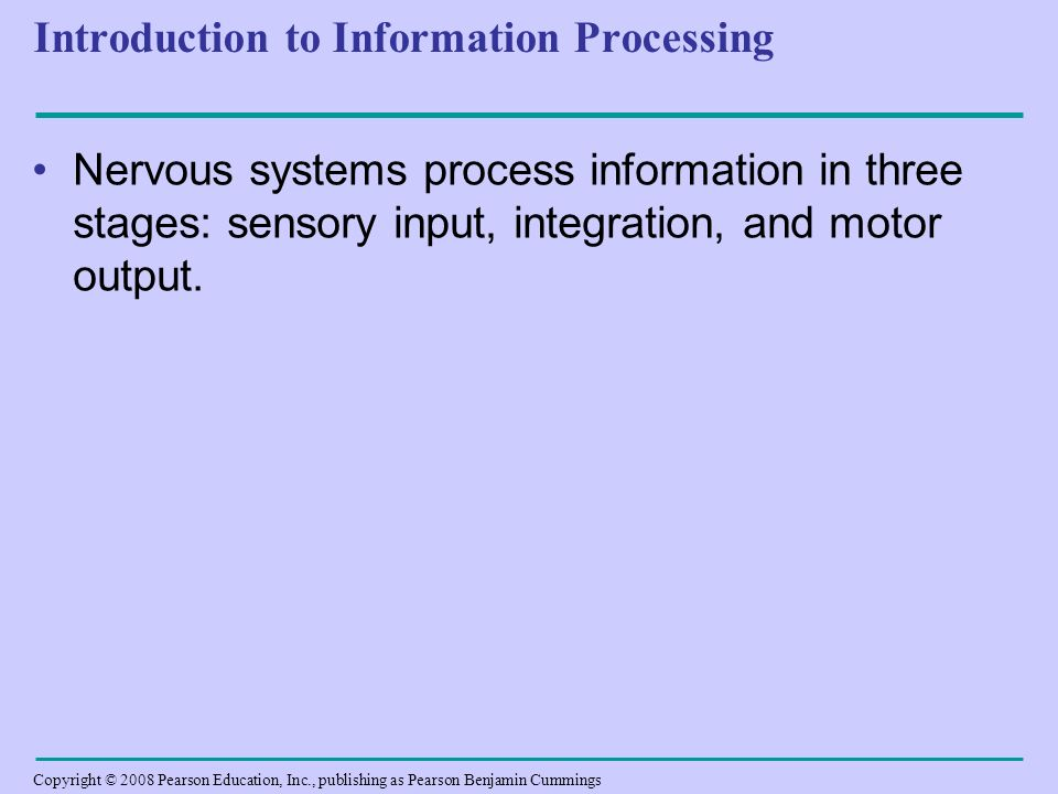 introduction about developing information system