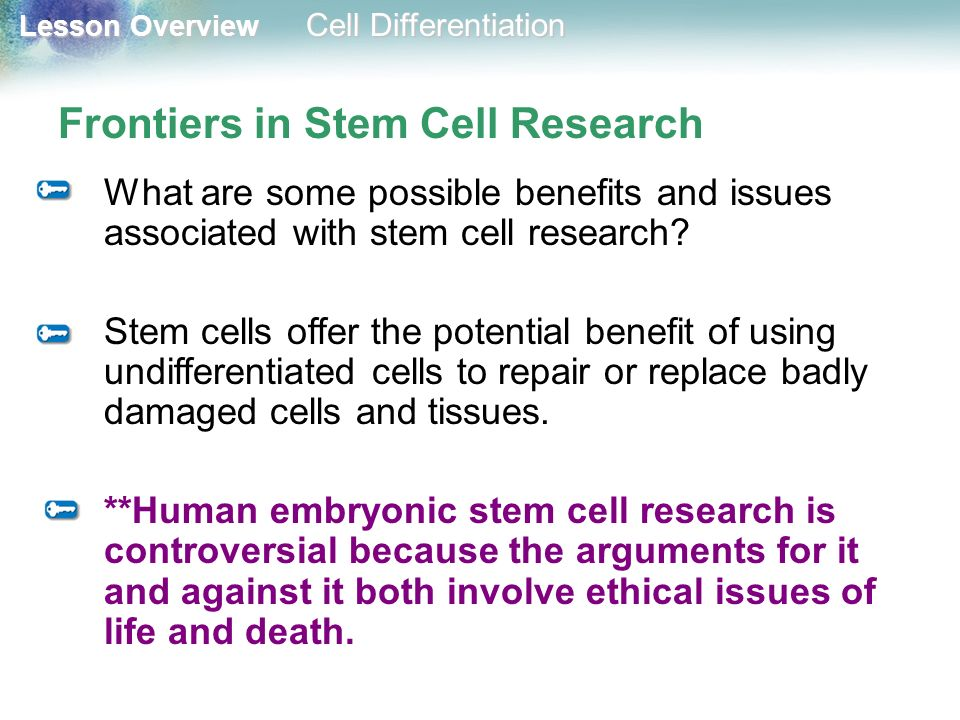 Frontiers in Stem Cell Research
