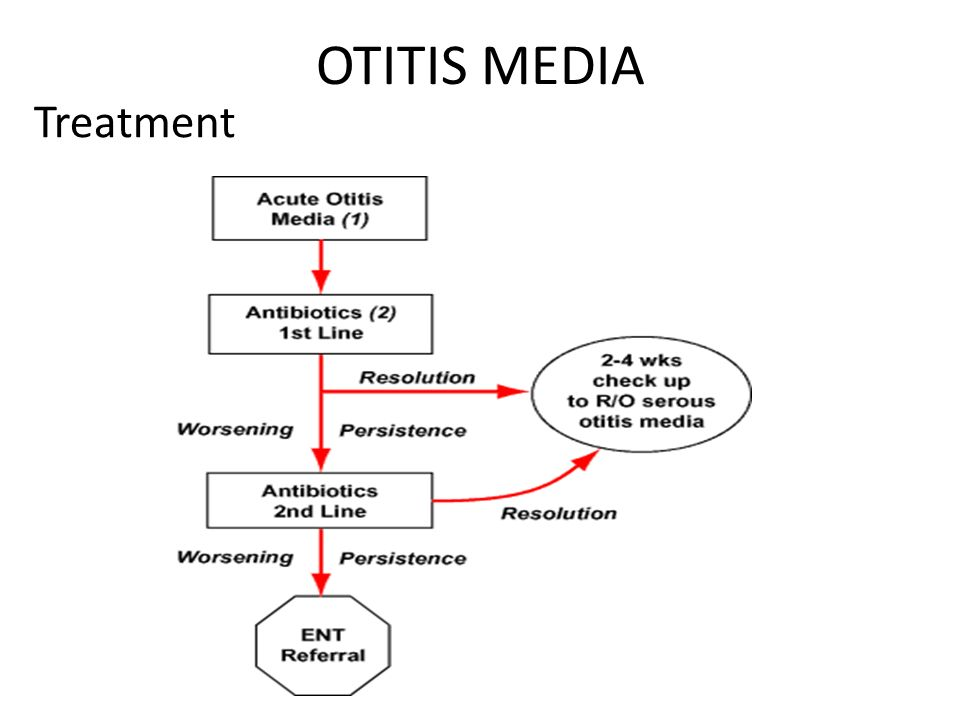 treatment of adult otitis media