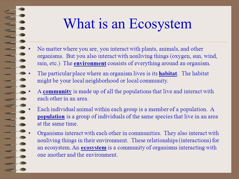 What is an Ecosystem No matter where you are, you interact with plants,  animals, and other organisms  But you also interact with nonliving things  (oxygen,