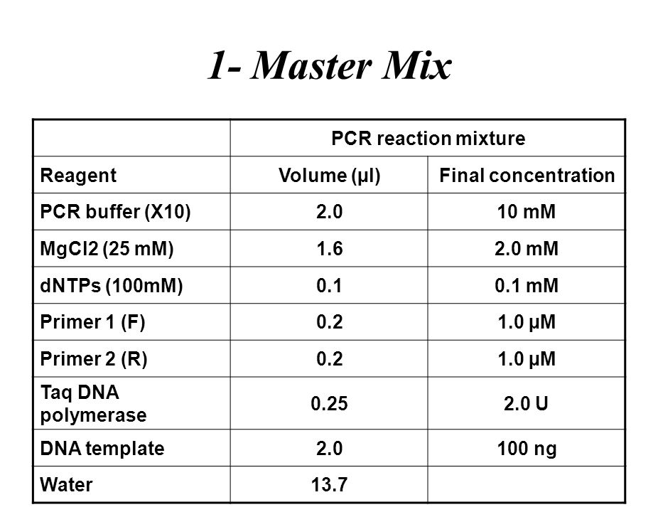 The polymerase chain reaction ppt download for How much template dna for pcr