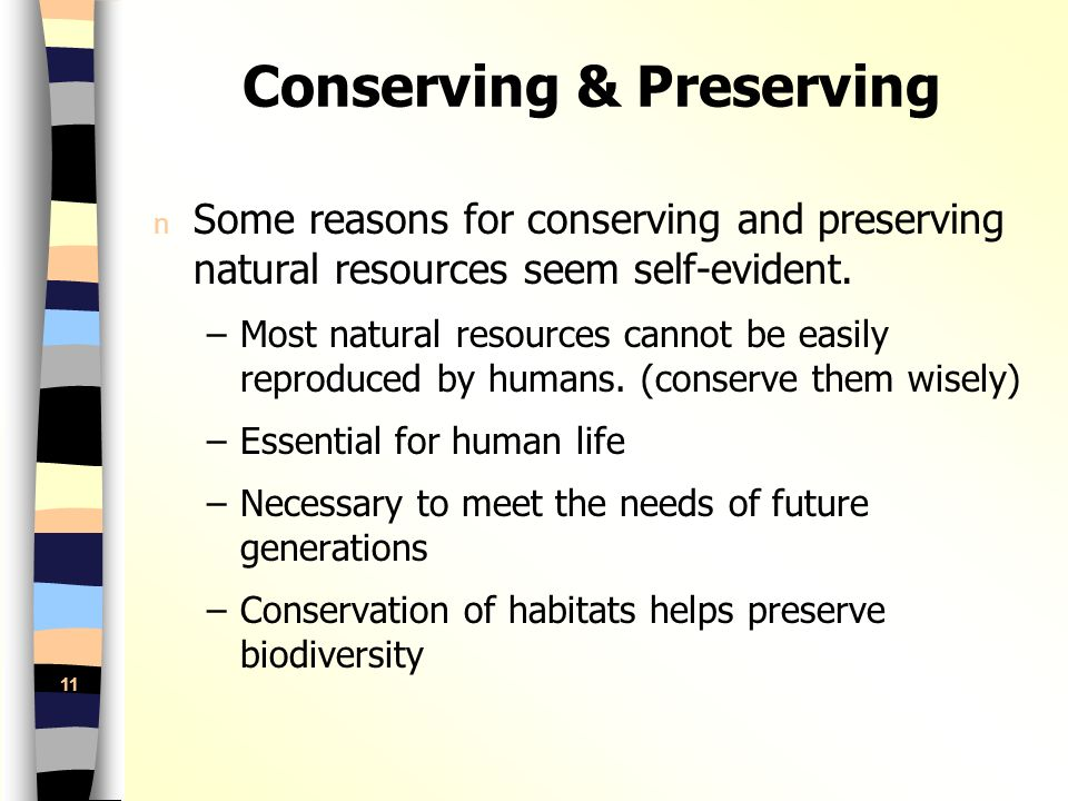preservation natural resources essay The other way to save natural gas is the use of another energy source for instance hydro, solar or wind power are all healthy and great alternatives to conserving natural resources in fact these energy sources are clean and healthy for environment.